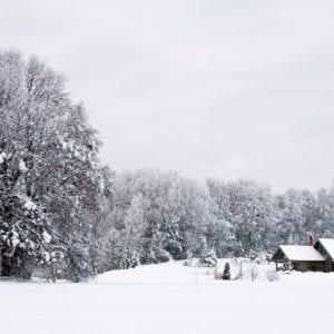 2016-01-27-elena-hruleva-barnimages-001